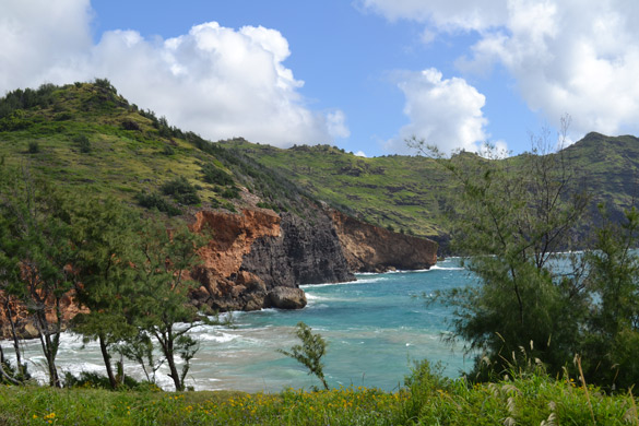 Kauai's rugged coastline