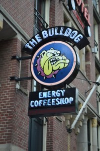 Bulldog coffee shop in Amsterdam
