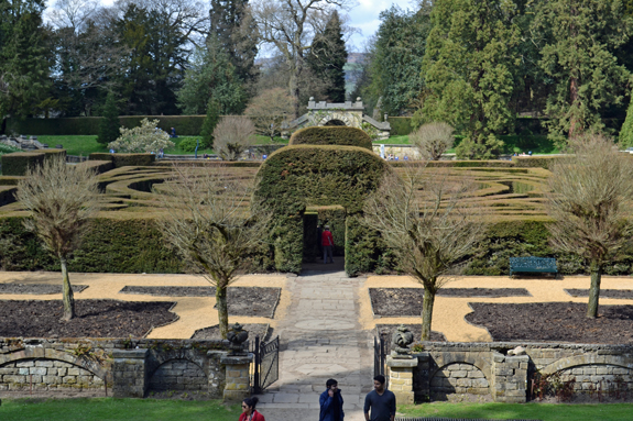 hedge maze at Chatsworth, England