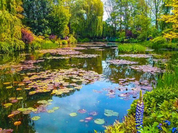 Monet's pond.