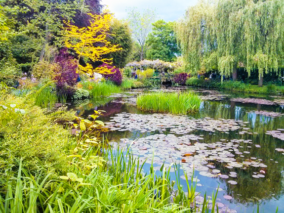 Monet's pond and water lilies